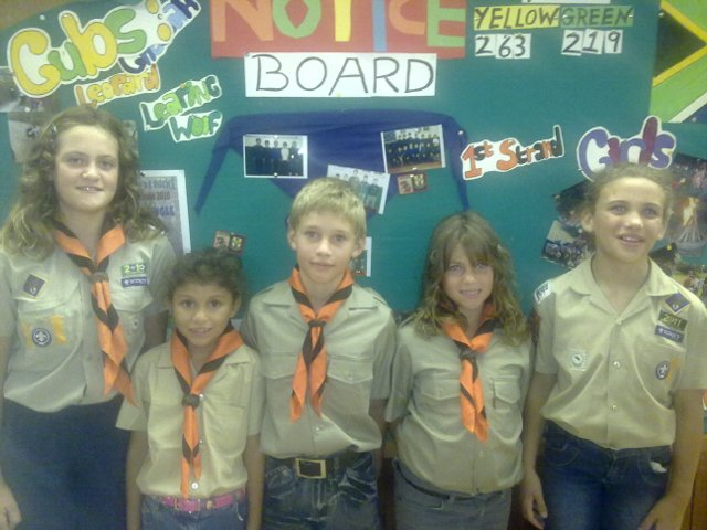newest 1st Strand cubs
